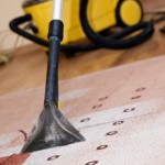 Best Carpet Cleaning Companies